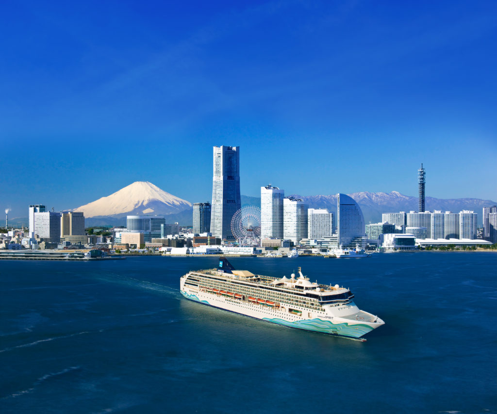 2020 Record Year for Cruise Ship Drydocks